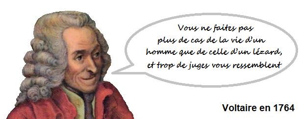 Voltaire en 1764